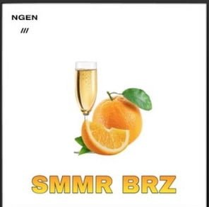 From the Artist NGEN Listen to this Fantastic Spotify Song Smmr Brz
