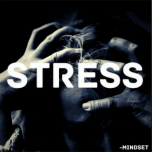 From the Artist Mindset Listen to this Fantastic Spotify Song Stress