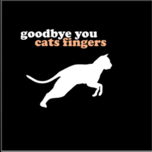 From the Artist cats fingers Listen to this Fantastic Spotify Song goodbye you