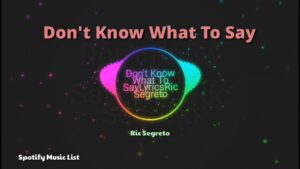 Don't Know What To Say - Ric Segreto / Spotify List