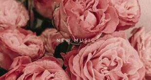 LIVIA AND THE ROSEBUDS NEW MUSIC RELEASE
