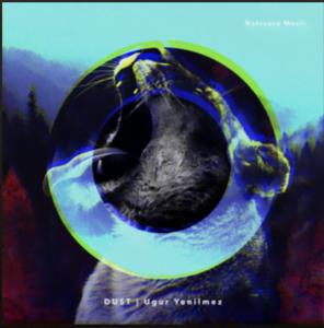 From the Artist Ugur Yenilmez Listen to this Fantastic Spotify Song Marsh