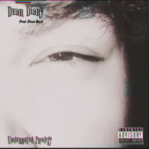 From the Artist FATHER SAiNT From Underrated Prodigy Listen to this Fantastic Spotify Song Dear Diary