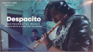 Despacito Instrumental Music Video |Paras Nath , Santosh
