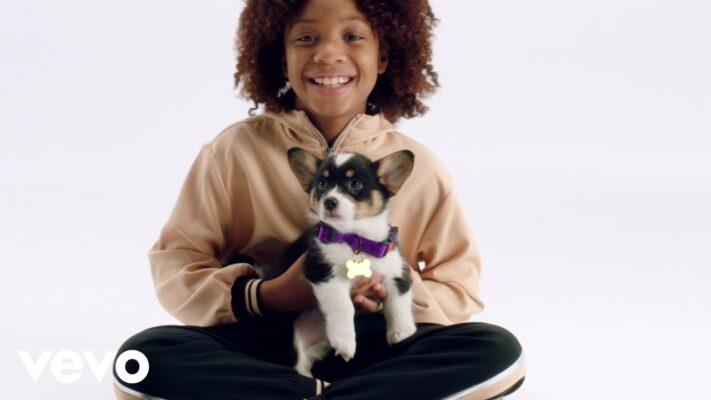 Daveed Diggs - Puppy for Hanukkah