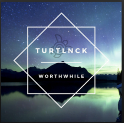 From the Artist Turtlnck Listen to this Fantastic Spotify Song Worthwhile
