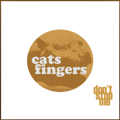 From the Artist Cats Fingers Listen to this Fantastic Spotify Song Don't Stop Me